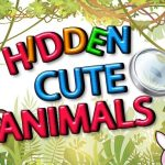 Hidden Cute Animals